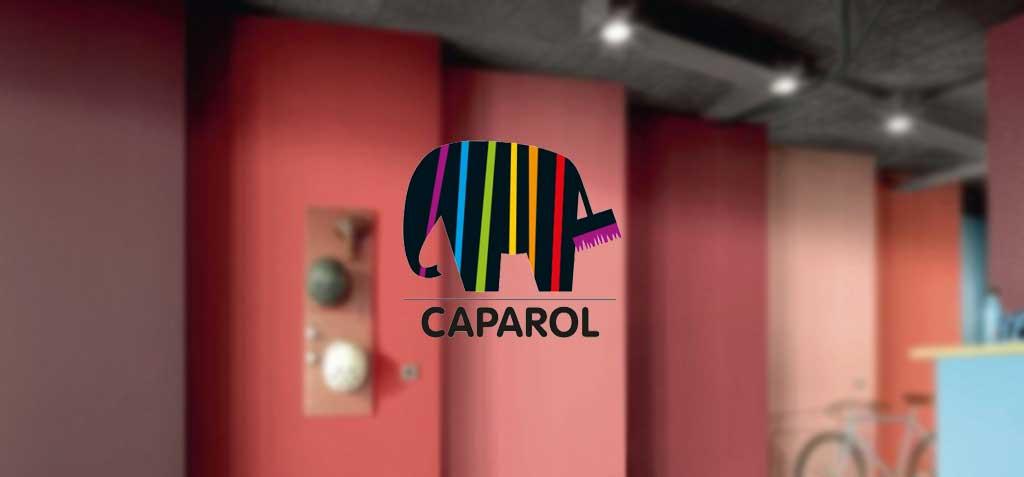 رنگ کاپارول - لیست قیمت رنگ کاپارول هاویلوکس